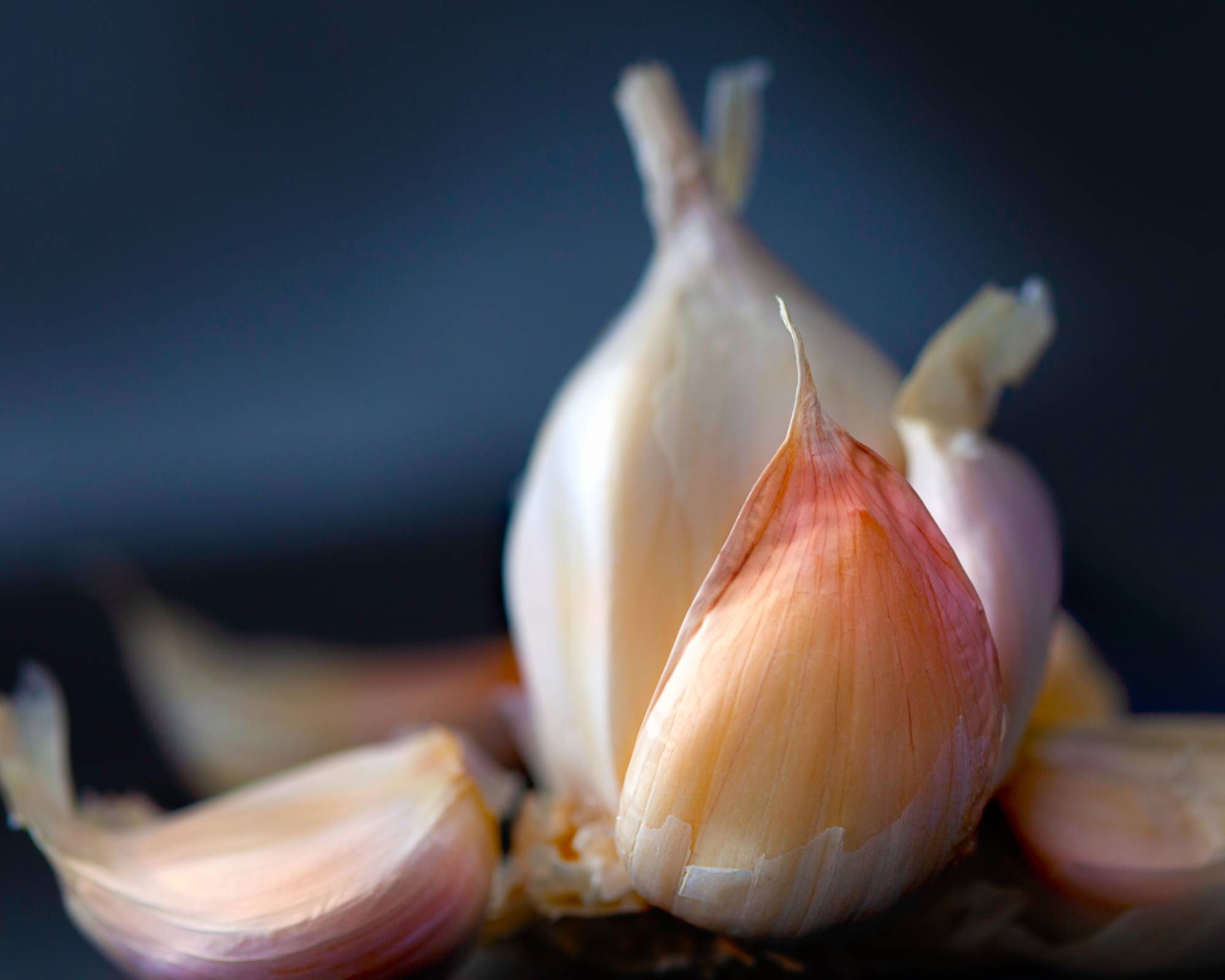 Fermented Garlic Recipe